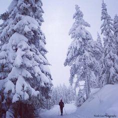 Gåsbu Skisenter Hamar - Nicole Lisa Photography Norway, Lisa, Places To Visit, Photography, Outdoor, Outdoors, Photograph, Fotografie, Photoshoot