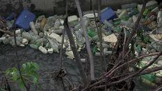ECOLOGIA/ parola chiave n.4 : INQUINAMENTO Inquinamento significa introduzione nell'acqua, nell'aria, nel suolo di sostanze o energie che possano mettere in pericolo la salute dell'uomo o la sicurezza e il benessere di ogni specie vivente. Nei prossimi decenni la maggior parte della popolazione mondiale sarà costretta a sopportare un degrado ambientale sempre piu` intollerabile se le emissioni inquinanti delle attività umane non verranno limitate. #ecobellusco #ecologia #ambiente…