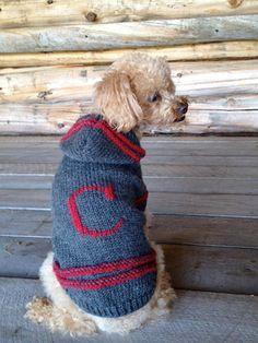 Monogram Dog Sweater by Charliecloset on Etsy, $60.00