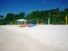 7 Things to Do at Aliguay Island in Dapitan City, Zamboanga del Norte, Philippines Mindanao, Places Of Interest, Beach Resorts, Philippines, Beach Mat, Things To Do, Outdoor Blanket, Island, Park