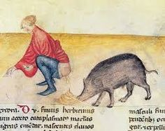 Image result for medieval  illuminations donkeys