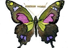 WATERCOLOR BUTTERFLY Purple Swallowtail. Seen on ebay. Seller swjck1972