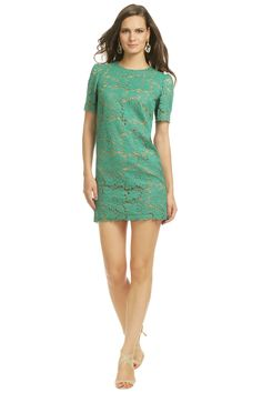 MSGM   Giverny Gardens Sheath  Rental $100 Retail $875  Stylist Notes  Product Details  Size & Fit  Be a doll in this marvelous MSGM emerald lace dress! Perfect to wear to a bridal shower or your next brunch date with the girls.