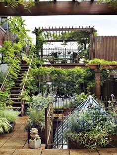 Private garden, Chelsea, plants, staircases, wood