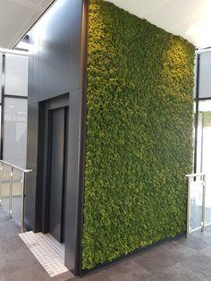 Green Companies, Garage Entry, Moss Art, Green Walls, Sweet Home, Planters, Interior Design, Inspiration, Ideas