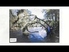 A quick 60-second glimpse of Kara & Cal's engagement session at Hillsborough River State Park in Thonotosassa, FL by Florida and New England wedding photographer Brian Adams PhotoGraphics: brianadamsphoto.com