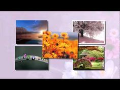 Bolluk Bereket Meditasyonu - YouTube Reiki, Youtube Youtube, Painting, Painting Art, Paintings, Painted Canvas, Drawings
