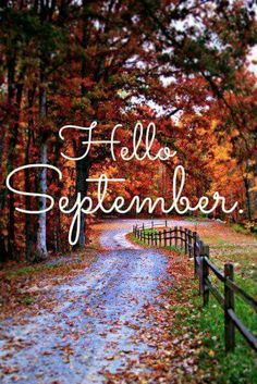 High Quality Hello September