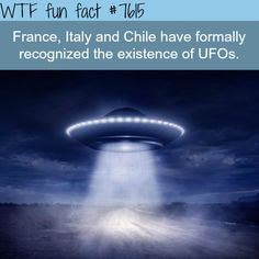 WTF Facts - Page 35 of 1045 - Funny, interesting, and weird facts Alien Facts, Scary Facts, Science Facts, Wtf Fun Facts, True Facts, Funny Facts, Random Facts, Random Things, Odd Facts