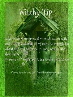 Witchy tip for your home: wash down your front door with warm water and a little essential oil of mint to refresh the vibrations and welcome in luck, wealth and abundance. (Peppermint tea works as well!)