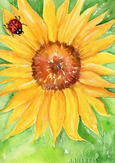Sunflower with lady bug watercolors paintings original, 5 x 7 flower art, original watercolor painting of sunflower, ladybug