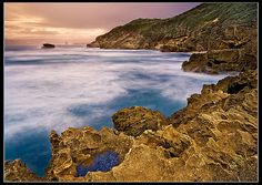 East Londons Wild Side    Nahoon Point nature reserve in the Eastern Cape of South Africa.