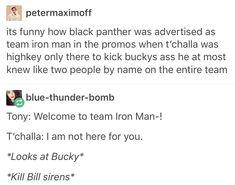 Cacw, captain America civil war, King t'challa of Wakanda, black panther, Bucky Barnes, marvel, mcu, avengers