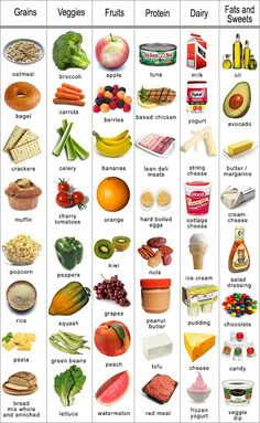 nutrition variety - veggies, fruit, grains, protein, dairy, fats