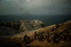shutter.thoughts - an exploration of contemporary documentary photography: Guano - Tomas Munita