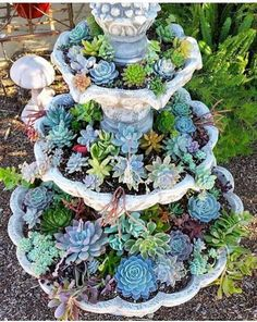 Succulents are beautiful, unique garden plants. Their texture and colors are a sure way to impress and add some uniqueness to your garden. beautiful garden plants succulents texture their unique DecorationOutdoor Garden Plants, Succulent Garden Diy, Succulent Garden Design, Succulents Garden, Garden Fountains, Succulents, Plants, Fairy Garden, Backyard Landscaping