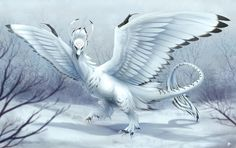 Snowy Dragon by Seyumei