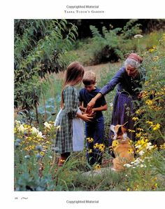 Amazon.com: Tasha Tudor's Garden (9780395436097): Tovah Martin, Richard W. Brown: Books