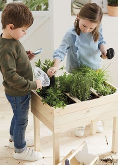 Wooden Garden Planters, Outdoor Garden Decor, Outdoor Gardens, Herb Garden Kit, Garden Boxes, Cardboard Costume, Kids Outdoor Furniture, Garden Shop, Fruit Garden