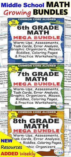 6th Grade Math Standards Based Assessments BUNDLE All Standards