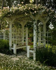 Pergola entry and landscaping idea.