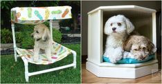 30+ Cool DIY Dog Beds You Can Make For Your Pup We are calling all our fellow dog lovers. You have to check out these cool DIY dog beds. They are even better than what you can buy in most pet stores. With the easy to follow tutorials, now you can handmake one with love for your pup baby. These awesome DIY dog beds are perfect for those who... Custom Dog Beds, Puppy Beds, Pet Style, Diy Dog Bed, The Perfect Dog, How To Make Diy, Dog Accessories, Cool Diy, Dog Lovers
