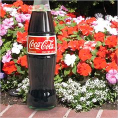 You won't believe what Coke can do for your lawn!--i need to see if this works! Garden Weeds, Lawn And Garden, Garden Pots, Garden Solutions, Tree Care, Garden Care, Lawn Care, Good Advice, Gardening Tips