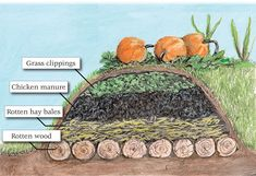 Hügelkultur is very similar to lasagna gardening, although the beds can be stacked as high as six feet and should look like hills. Permaculture Design, Permaculture Garden, Garden Compost, Homestead Gardens, Farm Gardens, Homestead Farm, Forest Garden, Autumn Garden, Organic Gardening Tips