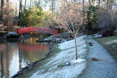 """""""The red bridge, some feathered friends and some snow in Duke Gardens."""" Photo courtesy of Duke Economics"""