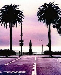 Santa Monica, L.A. Santa Monica, Places Ive Been, California, World, Travel, Viajes, Destinations, The World, Traveling
