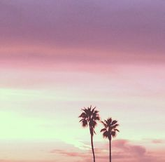LA Woman: The Los Angeles Spotify Mix | Free People Blog #freepeople
