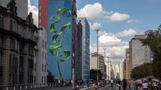 Soaring Murals of Plants on Urban Walls by Mona Caron | Colossal