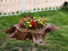 Tree Stump For Garden Art_38