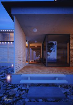 Villa House 3Ds MAx Vray Ps
