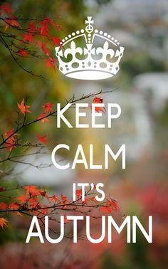 Keep Calm it's autumn Sign Quotes, Qoutes, Stay Calm Quotes, November Rain, Keep Calm Posters, Weather Forecast, Calm Down, Happy Fall, Four Seasons