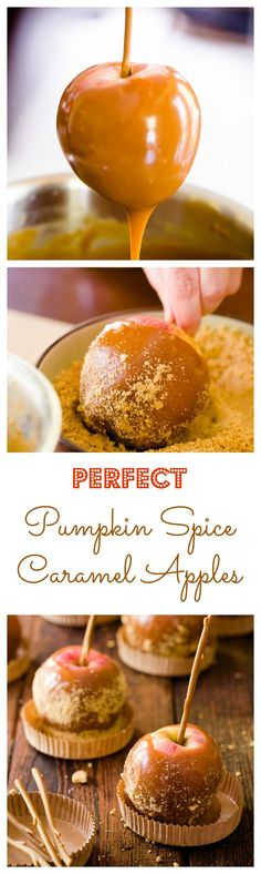 It can be tough to make caramel apples where the caramel isn't too rock hard or too drippy. This recipe is absolutely perfect and the pumpkin spice flavor is divine! I also love the caramel apple supplies, like their extra large treat cups and cut Apple Recipes, Pumpkin Recipes, Fall Recipes, Holiday Recipes, Coffee Recipes, Köstliche Desserts, Delicious Desserts, Dessert Recipes, Plated Desserts