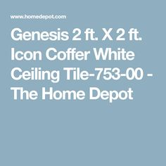 Genesis 2 ft. X 2 ft. Icon Coffer White Ceiling Tile-753-00 - The Home Depot