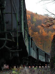 Geisterbahn III - Die vergessenen Eisenbahnwaggons in Franken. (Farbe) Hier nun der farbige Teil des Waggon-Friedhofs.