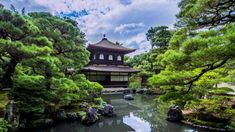 3 HOURS Relaxing Music   Japan Traditional Instrumental Flute   for Medi...
