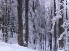 Az Északi-Középhegység - YouTube Snow, Education, Outdoor, Youtube, Hungary, Creative, Outdoors, Outdoor Games, Onderwijs