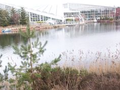 Centre Parcs Centre, Spaces