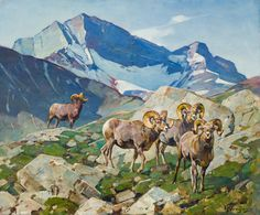 Carl Clemens Moritz Rungius Artwork for Sale at Online Auction Wildlife Paintings, Wildlife Art, Landscape Paintings, Nature Hunt, Big Horn Sheep, Hunting Art, Moritz, Coeur D'alene, Southwest Art