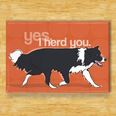 I herd you (border collie)  @Sue Deniston  Did you see this one?