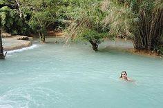 natural backyard swimming pool, no chemicals