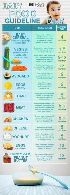 Baby food guideline
