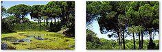 Centres de méditation - Portal de Turismo do Algarve