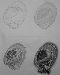 Ring 7/7. Commission work done. #rings #pencil #grapithe #wip #artshowroom #drawing #doodle  #Arts_help #spotlightonartists #Art_spotlight #supportart #Theartisthemotive #arts_secret #ArtSanity #dailyartistiq #bestartfeatures #artistshouts #Arts_galleri #artistic_nacion #legacyofart #art #cosmosofart #the_art_display #royaleartfeatures