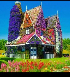 Дубай дома в цветах купить дом в оаэ недорого