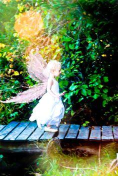 Taking flight in Monora Park