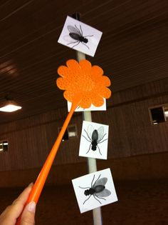 Fly Swatting Game- http://lessonsintr.wordpress.com/category/gamesIntroduce the game by talking about flies on the farm, why there are so many, why they are good and bad (make horses sick); the rider rolls the dice and must kill that many flies – they can kill all the flies on the same same pole, or spread the number across several poles.When they smack the fly on the pole, take it off and flip it into the air, letting it float to the ground – manipulate the fly swatter, focus, sequencing…